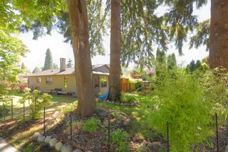 Photo 38: 1798 GARDEN Avenue in North Vancouver: Pemberton NV House for sale : MLS®# R2494520