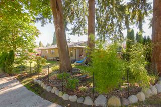 Photo 34: 1798 GARDEN Avenue in North Vancouver: Pemberton NV House for sale : MLS®# R2494520