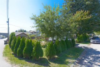 Photo 32: 1798 GARDEN Avenue in North Vancouver: Pemberton NV House for sale : MLS®# R2494520