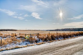 Photo 5: 64099 296 Ave. E: Rural Foothills County Land for sale : MLS®# A1049807
