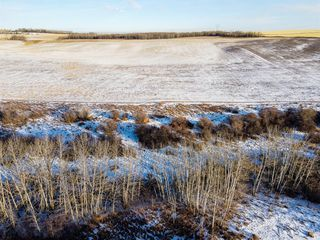 Photo 4: 64099 296 Ave. E: Rural Foothills County Land for sale : MLS®# A1049807