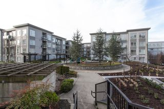 Photo 14: 107 13768 108 Avenue in Surrey: Whalley Condo for sale (North Surrey)  : MLS®# R2328719