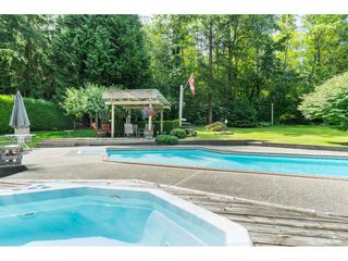 Photo 14: 16766 NORTHVIEW Crescent in Surrey: Grandview Surrey House for sale (South Surrey White Rock)  : MLS®# R2388869