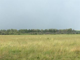 Photo 7: Range Road 81: Rural Brazeau County Rural Land/Vacant Lot for sale : MLS®# E4168671