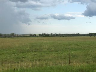 Photo 3: Range Road 81: Rural Brazeau County Rural Land/Vacant Lot for sale : MLS®# E4168671