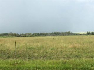Photo 6: Range Road 81: Rural Brazeau County Rural Land/Vacant Lot for sale : MLS®# E4168671