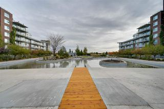 Photo 25: 414 2606 109 Street in Edmonton: Zone 16 Condo for sale : MLS®# E4188216
