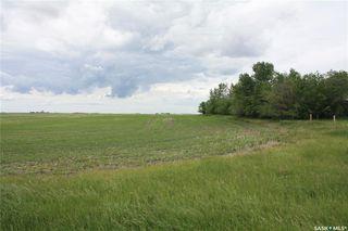 Photo 5: S 1/2 NE-33-36-6 W3 Rural Address in Saskatoon: Farm for sale : MLS®# SK813565