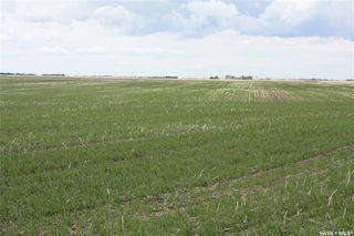 Photo 3: S 1/2 NE-33-36-6 W3 Rural Address in Saskatoon: Farm for sale : MLS®# SK813565
