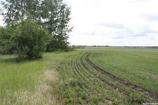 Photo 6: S 1/2 NE-33-36-6 W3 Rural Address in Saskatoon: Farm for sale : MLS®# SK813565