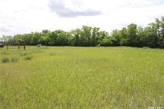 Photo 4: S 1/2 NE-33-36-6 W3 Rural Address in Saskatoon: Farm for sale : MLS®# SK813565