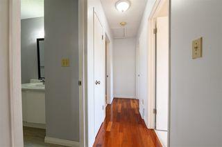 Photo 19: 18519 57 Avenue in Edmonton: Zone 20 House for sale : MLS®# E4209069