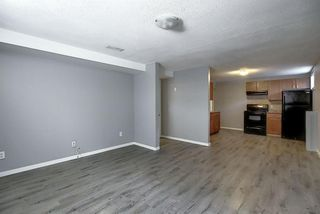 Photo 24: 2439 42 Street in Calgary: Forest Lawn Detached for sale : MLS®# A1022830