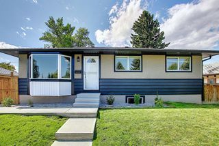 Photo 39: 2439 42 Street in Calgary: Forest Lawn Detached for sale : MLS®# A1022830