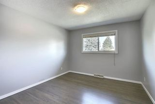 Photo 17: 2439 42 Street in Calgary: Forest Lawn Detached for sale : MLS®# A1022830