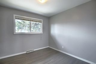 Photo 13: 2439 42 Street in Calgary: Forest Lawn Detached for sale : MLS®# A1022830