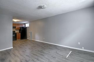 Photo 25: 2439 42 Street in Calgary: Forest Lawn Detached for sale : MLS®# A1022830