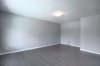 Photo 10: 2439 42 Street in Calgary: Forest Lawn Detached for sale : MLS®# A1022830