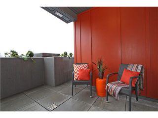 Photo 8: # 310 1201 W 16TH ST in North Vancouver: Norgate Condo for sale : MLS®# V1102313