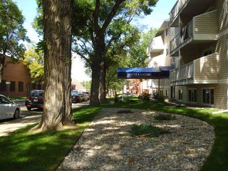 Photo 24: 212 10529 93 Street NW in Edmonton: Zone 13 Condo for sale : MLS®# E4170400