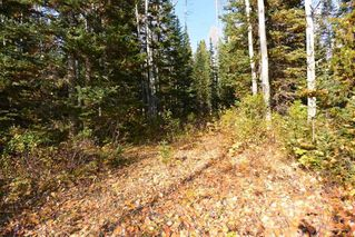 "Photo 5: Lot 8 GLACIER VIEW Road in Smithers: Smithers - Rural Land for sale in ""Silvern Estates"" (Smithers And Area (Zone 54))  : MLS®# R2410914"