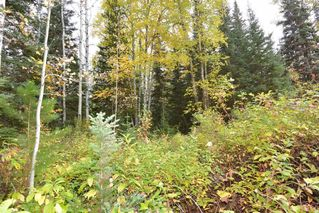 "Photo 7: Lot 8 GLACIER VIEW Road in Smithers: Smithers - Rural Land for sale in ""Silvern Estates"" (Smithers And Area (Zone 54))  : MLS®# R2410914"