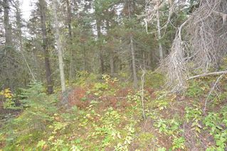 "Photo 12: Lot 8 GLACIER VIEW Road in Smithers: Smithers - Rural Land for sale in ""Silvern Estates"" (Smithers And Area (Zone 54))  : MLS®# R2410914"