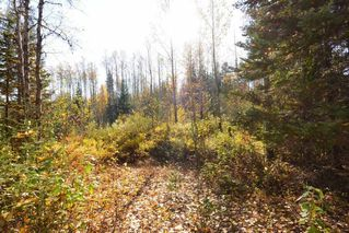 "Photo 6: Lot 8 GLACIER VIEW Road in Smithers: Smithers - Rural Land for sale in ""Silvern Estates"" (Smithers And Area (Zone 54))  : MLS®# R2410914"