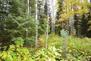 "Photo 8: Lot 8 GLACIER VIEW Road in Smithers: Smithers - Rural Land for sale in ""Silvern Estates"" (Smithers And Area (Zone 54))  : MLS®# R2410914"