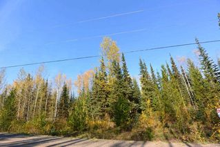 """Photo 16: Lot 8 GLACIER VIEW Road in Smithers: Smithers - Rural Land for sale in """"Silvern Estates"""" (Smithers And Area (Zone 54))  : MLS®# R2410914"""