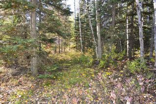 "Photo 15: Lot 8 GLACIER VIEW Road in Smithers: Smithers - Rural Land for sale in ""Silvern Estates"" (Smithers And Area (Zone 54))  : MLS®# R2410914"