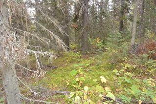 "Photo 13: Lot 8 GLACIER VIEW Road in Smithers: Smithers - Rural Land for sale in ""Silvern Estates"" (Smithers And Area (Zone 54))  : MLS®# R2410914"