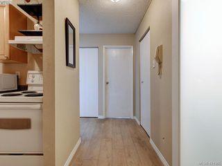 Photo 16: 125 1025 Inverness Road in VICTORIA: SE Quadra Condo Apartment for sale (Saanich East)  : MLS®# 421365