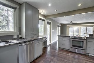 Photo 14: 10716 Fairmount Drive SE in Calgary: Willow Park Detached for sale : MLS®# C4295794
