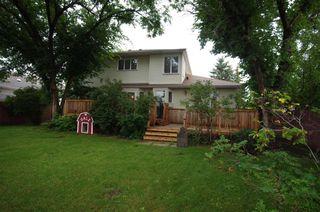 Photo 8: 12108 28 Avenue in Edmonton: Zone 16 House for sale : MLS®# E4198433