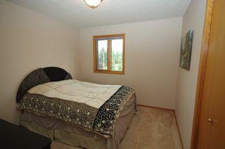 Photo 26: 12108 28 Avenue in Edmonton: Zone 16 House for sale : MLS®# E4198433