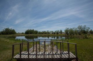 Photo 47: 25329 Twp Rd 560: Rural Sturgeon County House for sale : MLS®# E4213140