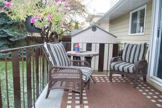 Photo 34: 11220 24 Avenue in Edmonton: Zone 16 House for sale : MLS®# E4218202