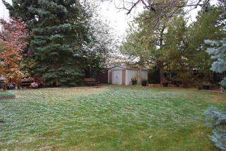 Photo 37: 11220 24 Avenue in Edmonton: Zone 16 House for sale : MLS®# E4218202