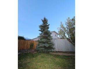 Photo 17: 114 ELDORADO Road SE: Airdrie Residential Detached Single Family for sale : MLS®# C3580200