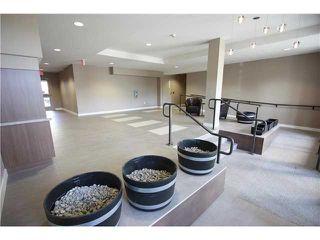 Photo 5: # 218 55 EIGHTH AV in New Westminster: GlenBrooke North Condo for sale : MLS®# V1040762