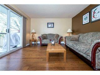 Photo 6: # 401 428 AGNES ST in New Westminster: Downtown NW Condo for sale : MLS®# V1053577