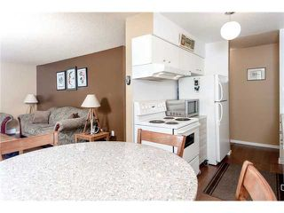 Photo 3: # 401 428 AGNES ST in New Westminster: Downtown NW Condo for sale : MLS®# V1053577