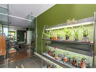 Photo 8: 202 1512 Yew Street in Vancouver: Kitsilano Condo for sale (Vancouver West)  : MLS®# V1092333
