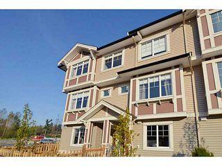 Photo 18: # 72 10151 240 ST in Maple Ridge: Albion Condo for sale : MLS®# V1089308