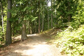 Photo 70: 11 6432 Sunnybrae Road in Tappen: Steamboat Shores Vacant Land for sale (Shuswap Lake)  : MLS®# 10155187