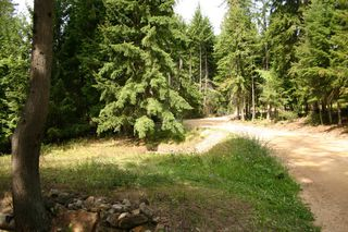 Photo 25: 11 6432 Sunnybrae Road in Tappen: Steamboat Shores Vacant Land for sale (Shuswap Lake)  : MLS®# 10155187