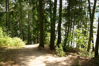 Photo 43: 11 6432 Sunnybrae Road in Tappen: Steamboat Shores Vacant Land for sale (Shuswap Lake)  : MLS®# 10155187