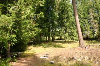 Photo 33: 11 6432 Sunnybrae Road in Tappen: Steamboat Shores Vacant Land for sale (Shuswap Lake)  : MLS®# 10155187