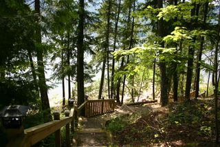 Photo 45: 11 6432 Sunnybrae Road in Tappen: Steamboat Shores Vacant Land for sale (Shuswap Lake)  : MLS®# 10155187